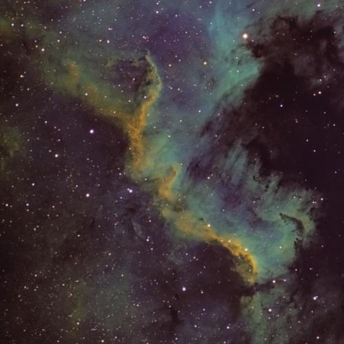 Golfo de México – NGC7000