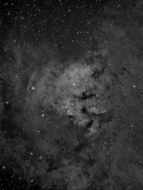 NGC7822 - ED80, ATIK383L, Ha 7nm