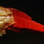 Viruta de lápiz