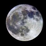 Luna en Color, año 2005